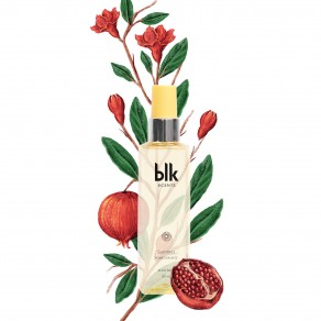 Blk K-Beauty Scents - Summer 120ml